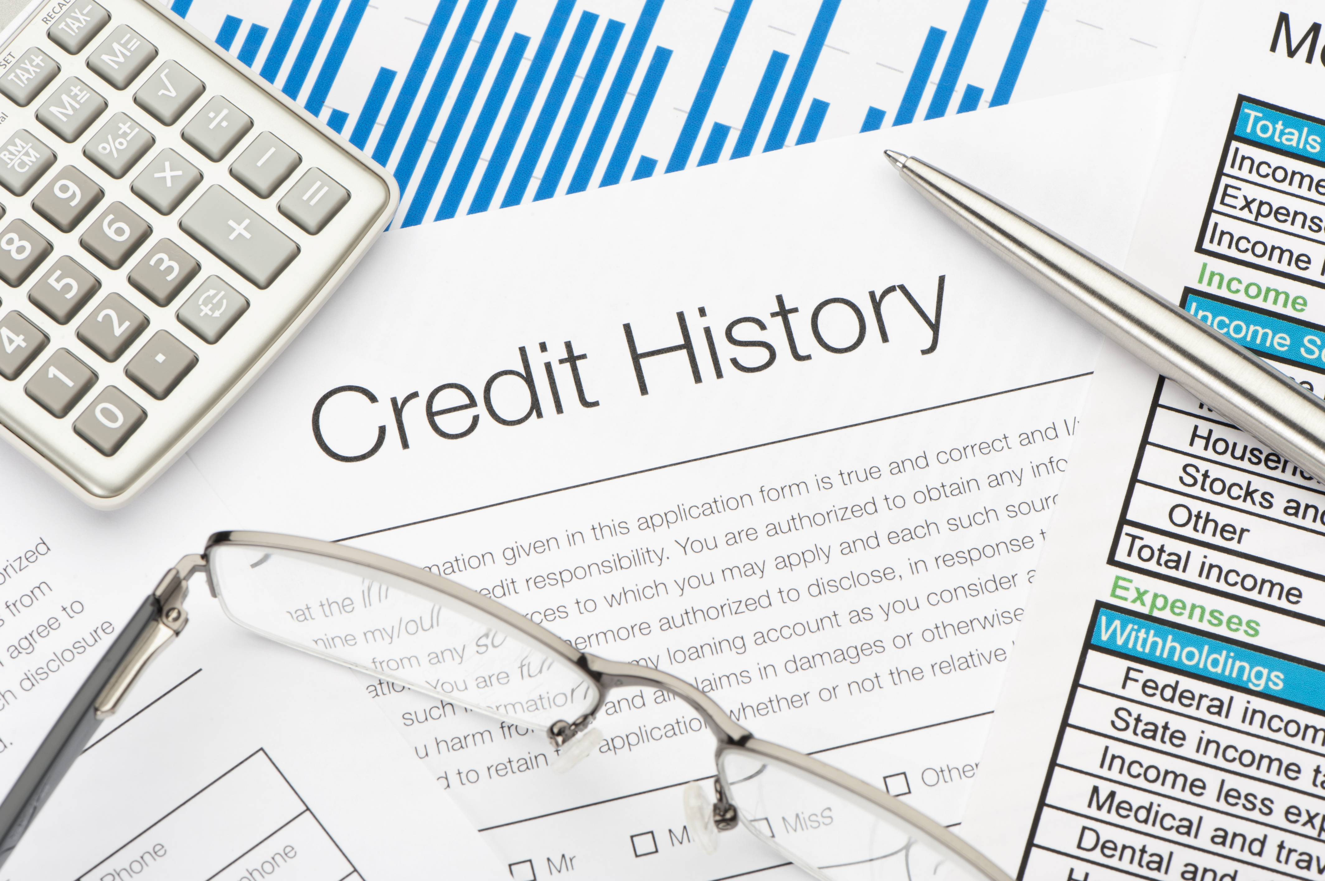 Credit History form